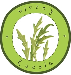 Fresh rucola vector