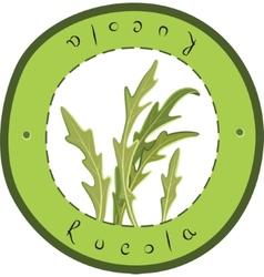 Fresh Rucola vector