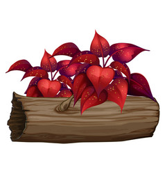 red leaves on white background vector image