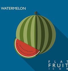 Watermelon flat icon with long shadow vector image