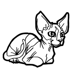 Cat Coloring Page vector image