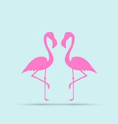 Flamingo bird design on background vector