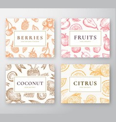 hand drawn coconut citrus berries and fruits vector image