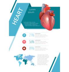 Internal human organs infographic heart vector