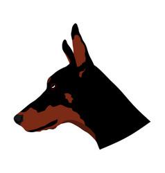 Portrait doberman pincher dog had symbol vector