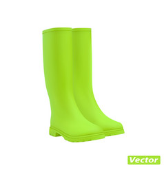 rubber boots on white background vector image