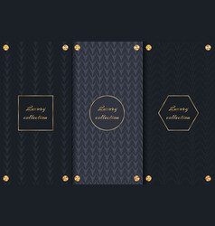 collection of elegant backgrounds vector image vector image