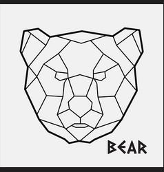 abstract polygonal geometric head a bear vector image