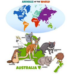 Educational cartoon australian animals vector