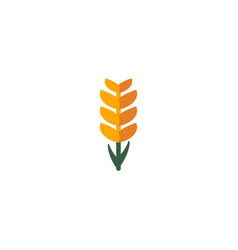 flat icon ear of wheat element vector image