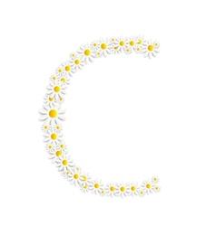 Flora Daisy Design Alphabet vector image