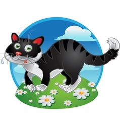 Black fun cat on color background vector image