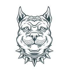 American pitbull terrier dog head vector