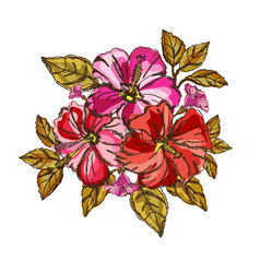 hibiscus floral bouquet vector image