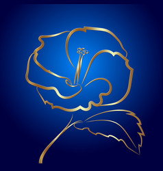 Hibiscus flower sketch gold on blue vector