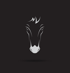 horse head design on black background wild vector image