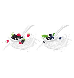 realistic yogurt splashes with berries vector image