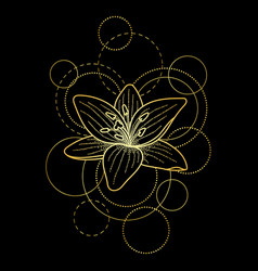 Tattoo with lily and circles on black background vector
