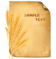 Wheat paper vector