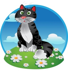 Black funny sitting cat on color background vector image vector image