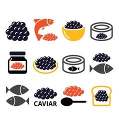 Caviar roe fish eggs icons set vector image vector image