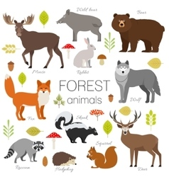 Forest animals isolated set moose wild vector