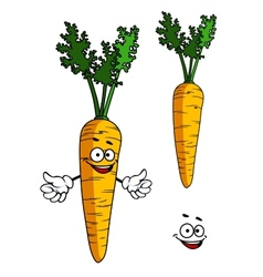 Happy cartoon carrot character vector image vector image