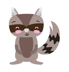 Colorful cute and smile raccoon wild animal vector
