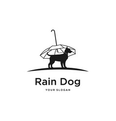 rain dog vector image