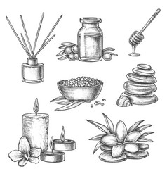 Sketch thai spa massage aromatherapy and wellness vector
