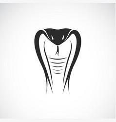 Snake head design on white background animals vector
