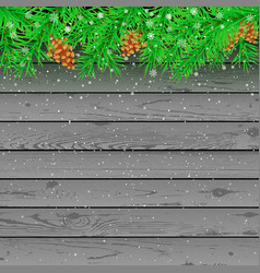spruce snow gray wooden background vector image vector image