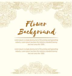 background vintage rose flower handdrawn floral vector image