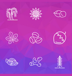 ecology icons line style set with macadamia vector image