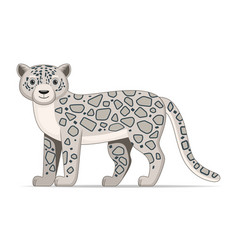 snow leopard standing on a white background vector image