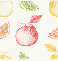 Vintage grapefruit background in pastel colors vector