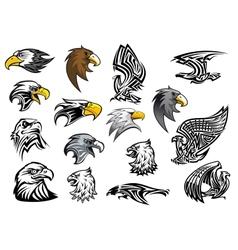 Cartoon eagle falcon and hawk heads vector