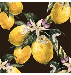 Watercolor lemon pattern vector image vector image