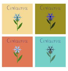 Assembly flat flower centaurea vector