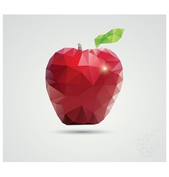 Geometric polygonal fruit triangles apple vector image