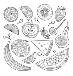 set of nutrient-rich raw fruits in boho style vector image