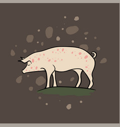Farm animal pig hand drawn vector