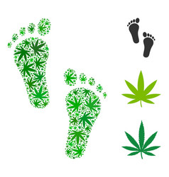 Human steps collage of cannabis vector