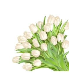 Isolated tulip frame EPS 10 vector image