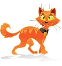 Pumpkin-orange Halloween cat vector image vector image