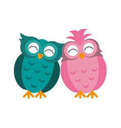 couple owls love romance vector image