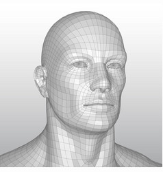 wire frame polygonal human head vector image vector image