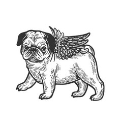 angel flying pug puppy engraving vector image