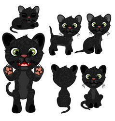 Black kitten in different poses in cartoon style vector