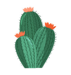 cartoon cactus bright cacti colored vector image